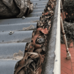 Gutter Cleaning in Melbourne AUS